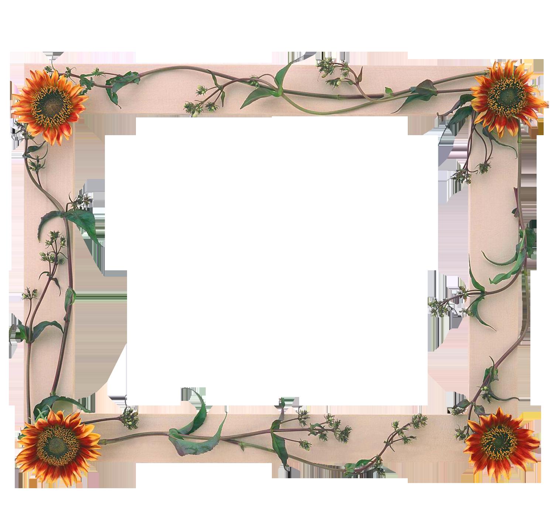 Marcos para fotos con flores fondos de pantalla y mucho - Marcos fotos pared ...