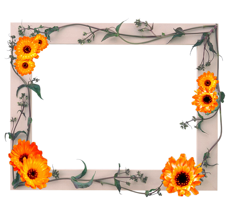 Февраля, рисунок рамки для фото