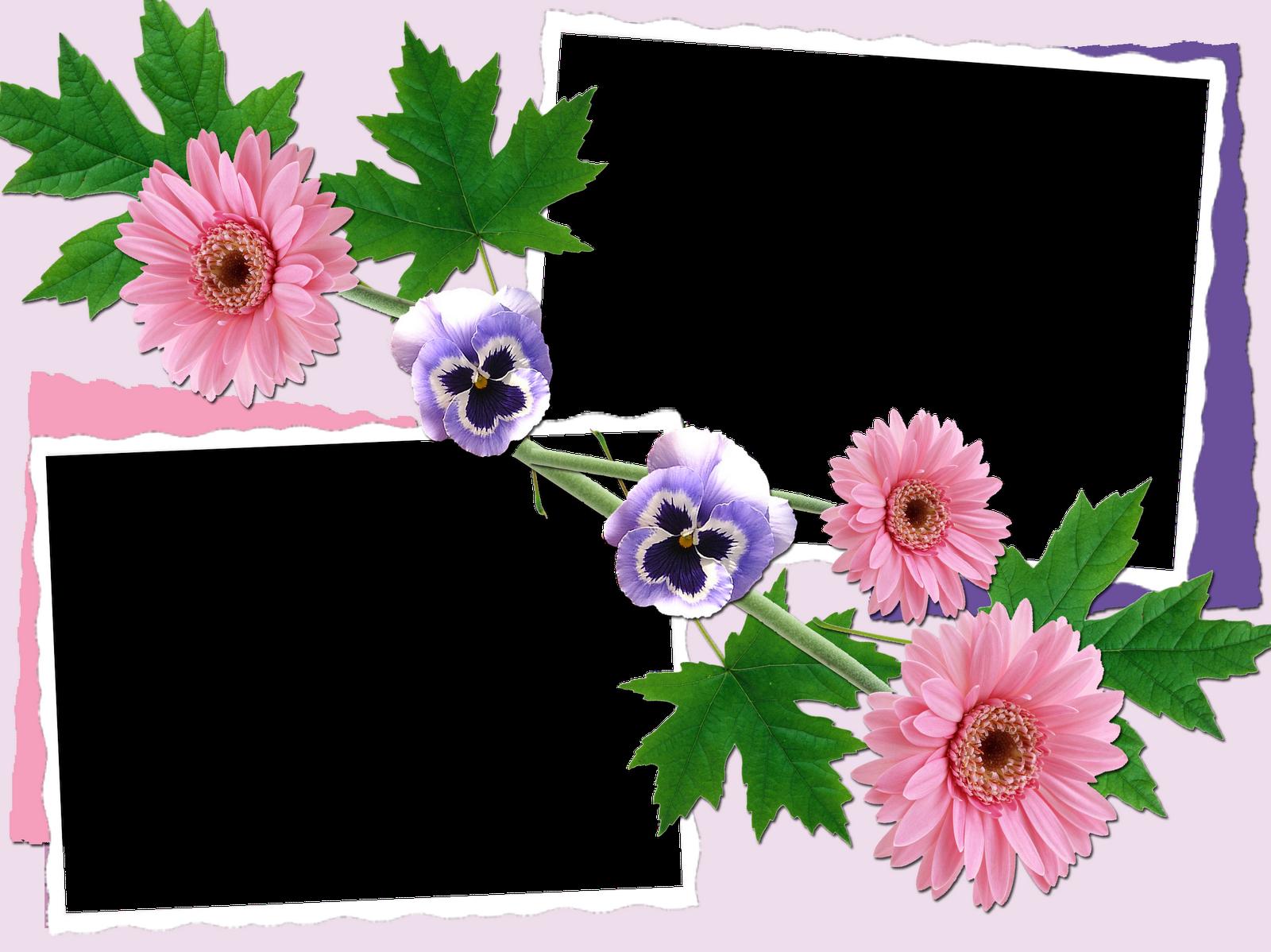 Famoso Fotos De Flores Marcos Bandera - Ideas Personalizadas de ...