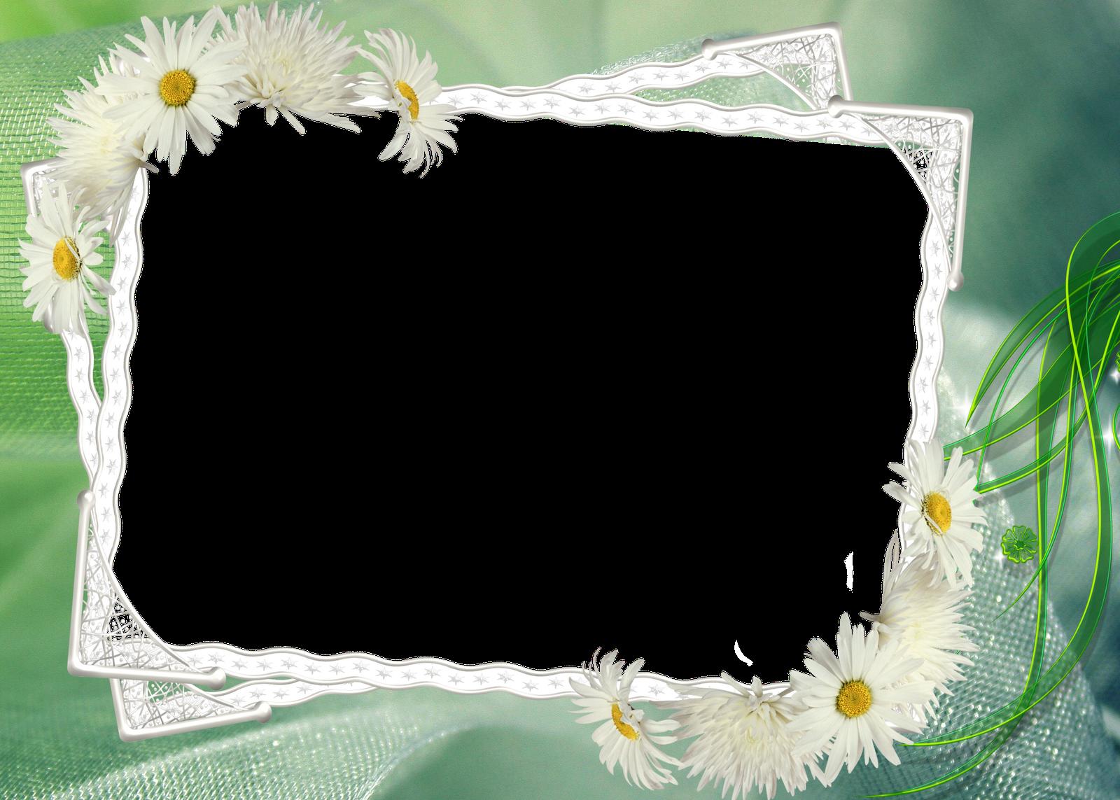 Marcos Para Fotos: Marcos Para Foto Con Flores