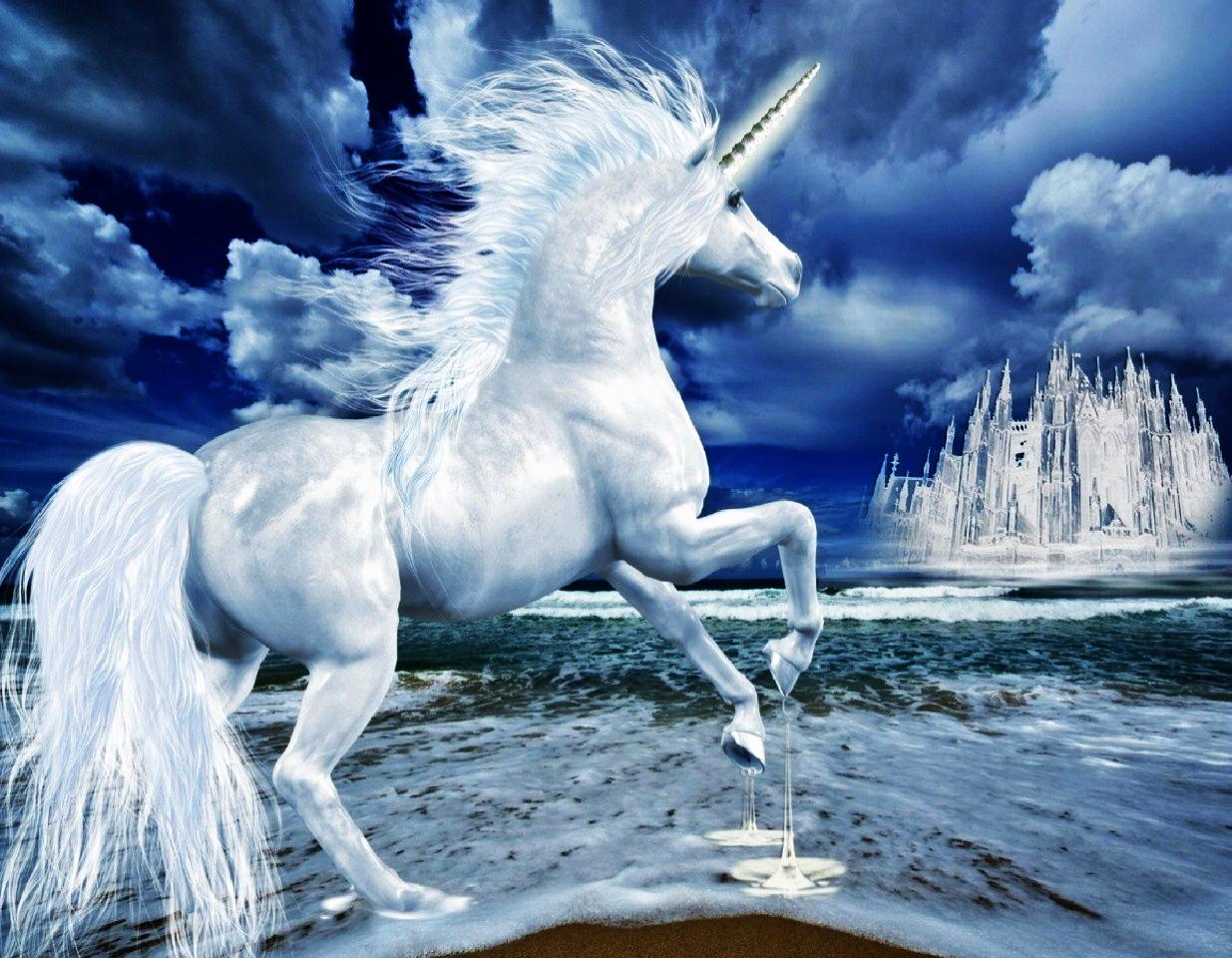 Fondos de pantalla de unicornios fondos de pantalla y for Fotos 2048x1152
