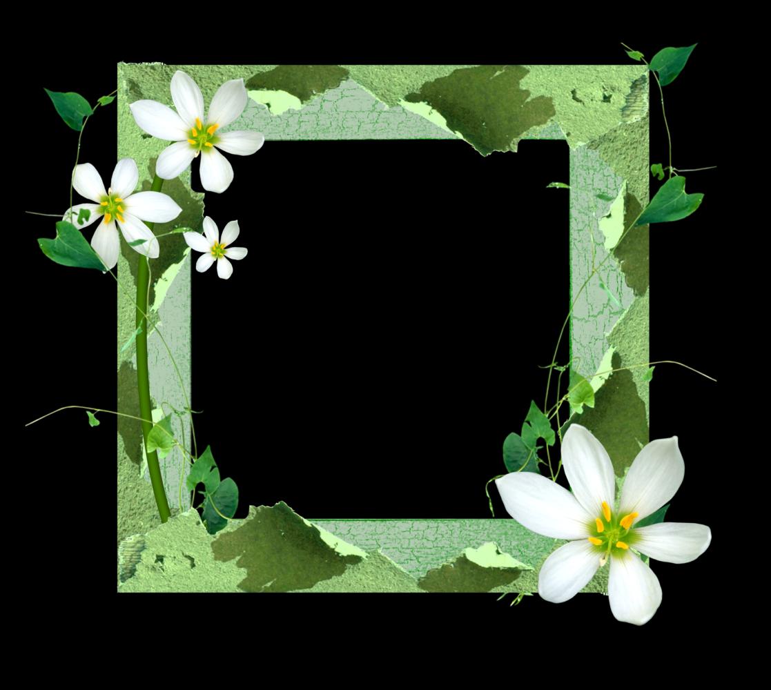 Marcos para fotos con flores fondos de pantalla y mucho m s p gina 3 - Marcos rusticos para fotos ...