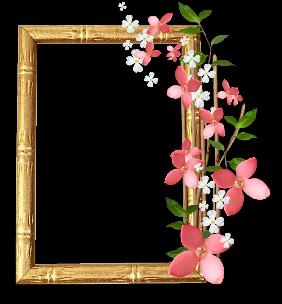 Marcos Para Fotos Con Flores Fondos De Pantalla Y Mucho