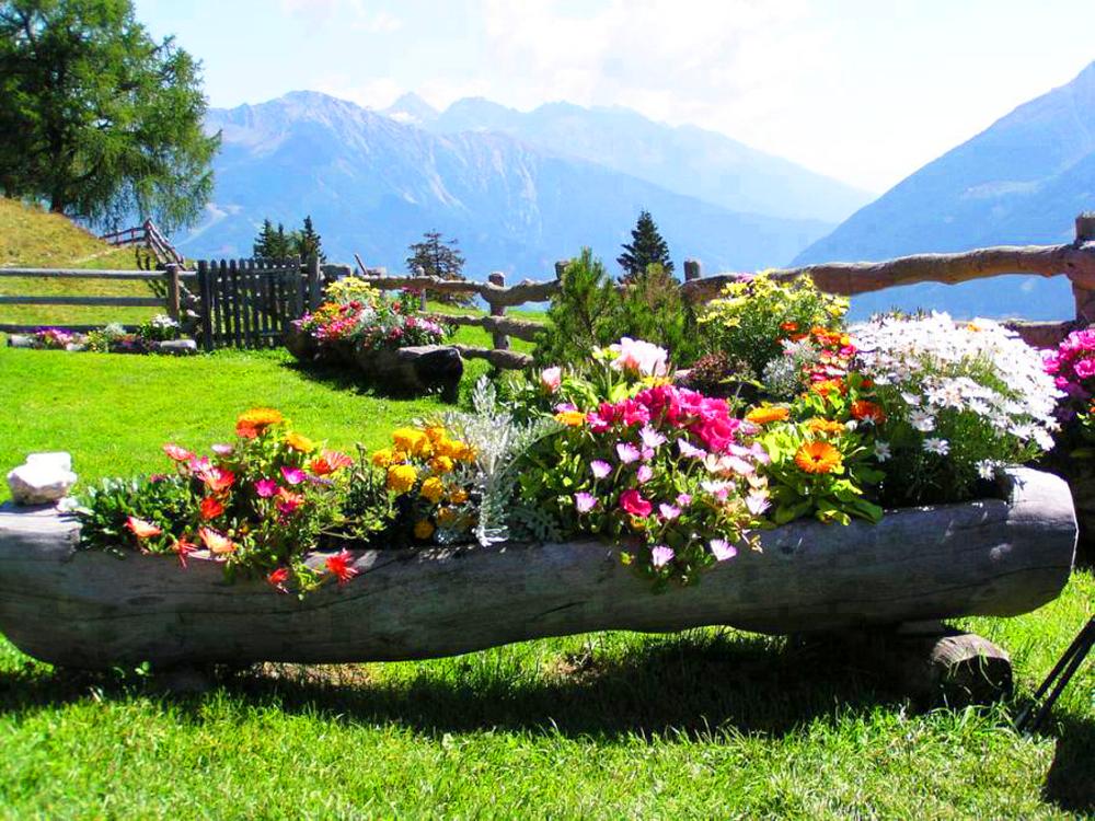 Fondos de pantalla de jardines fondos de pantalla y for Jardines bellos fotos