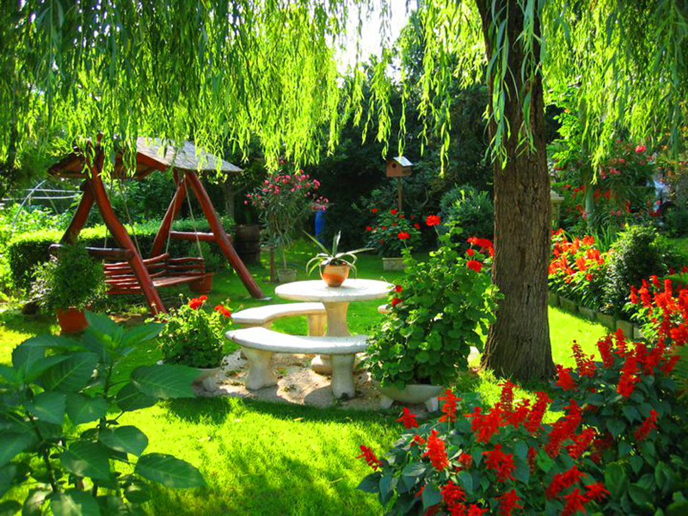 Fondos de pantalla de jardines fondos de pantalla y for Como disenar un jardin pequeno fotos