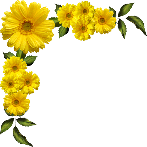 yellow flower vector png - photo #25