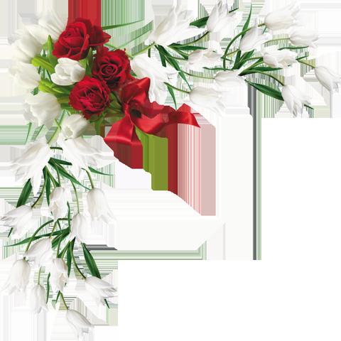 Resultado de imagen para Barras  y separadores de flores