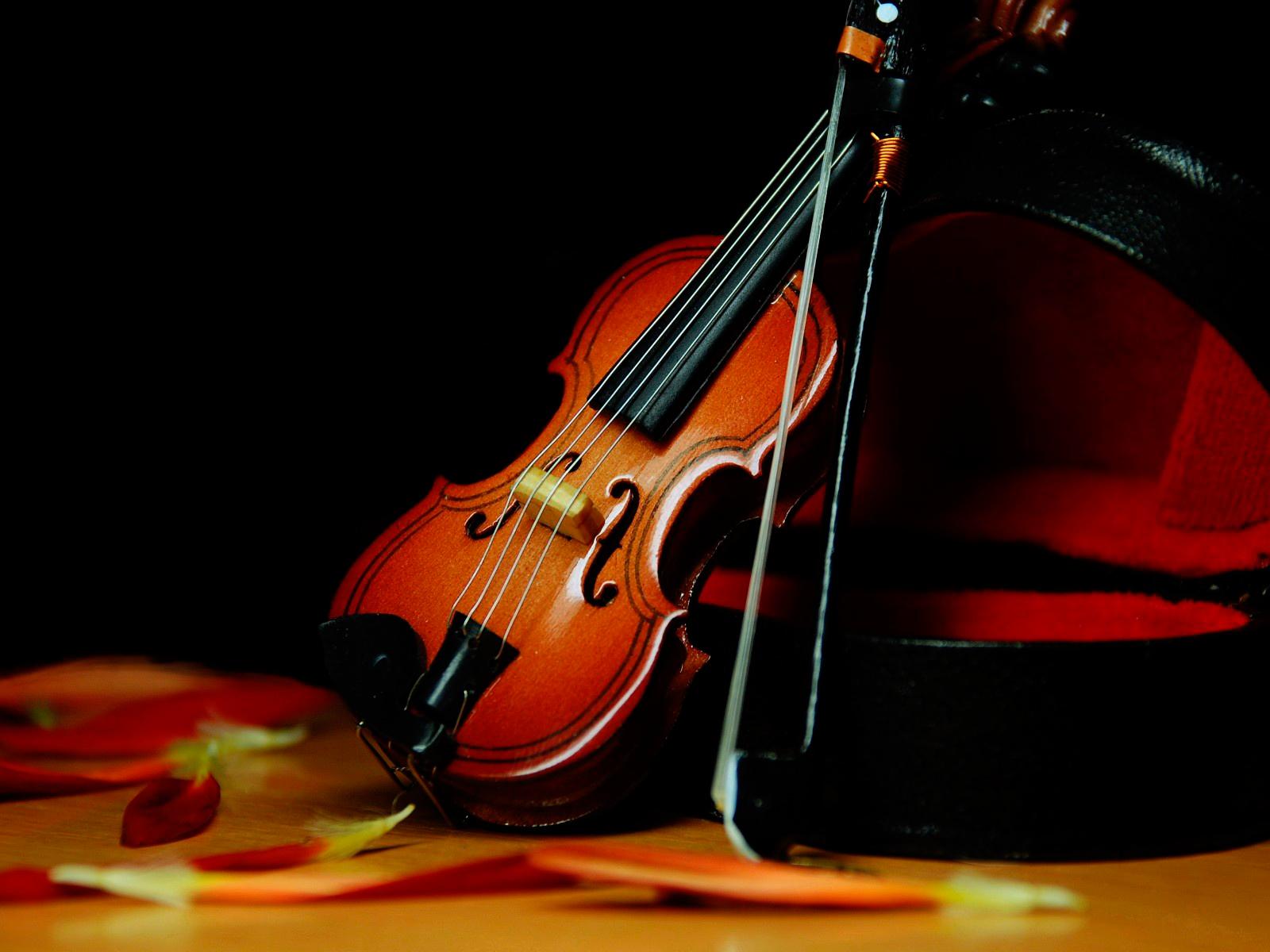 Cello Wallpaper Photo 22287 Hd Pictures: Fondos De Pantalla De Violines