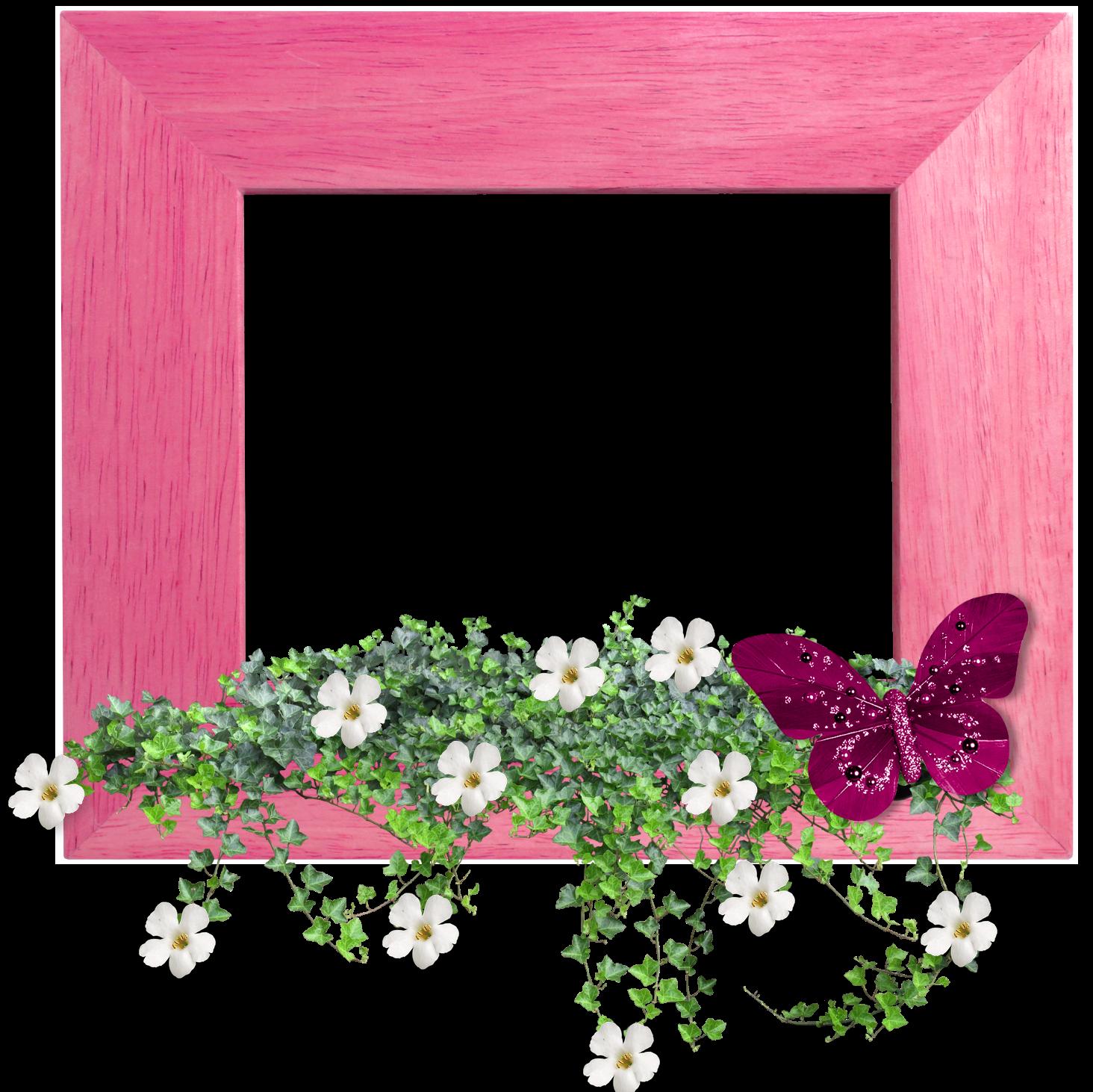Marcos para fotos con flores fondos de pantalla y mucho m s for Fotos para cuadros grandes