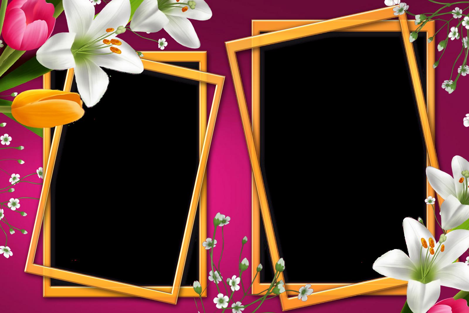 Marcos para fotos con flores fondos de pantalla y mucho m s - Marco de fotos ...