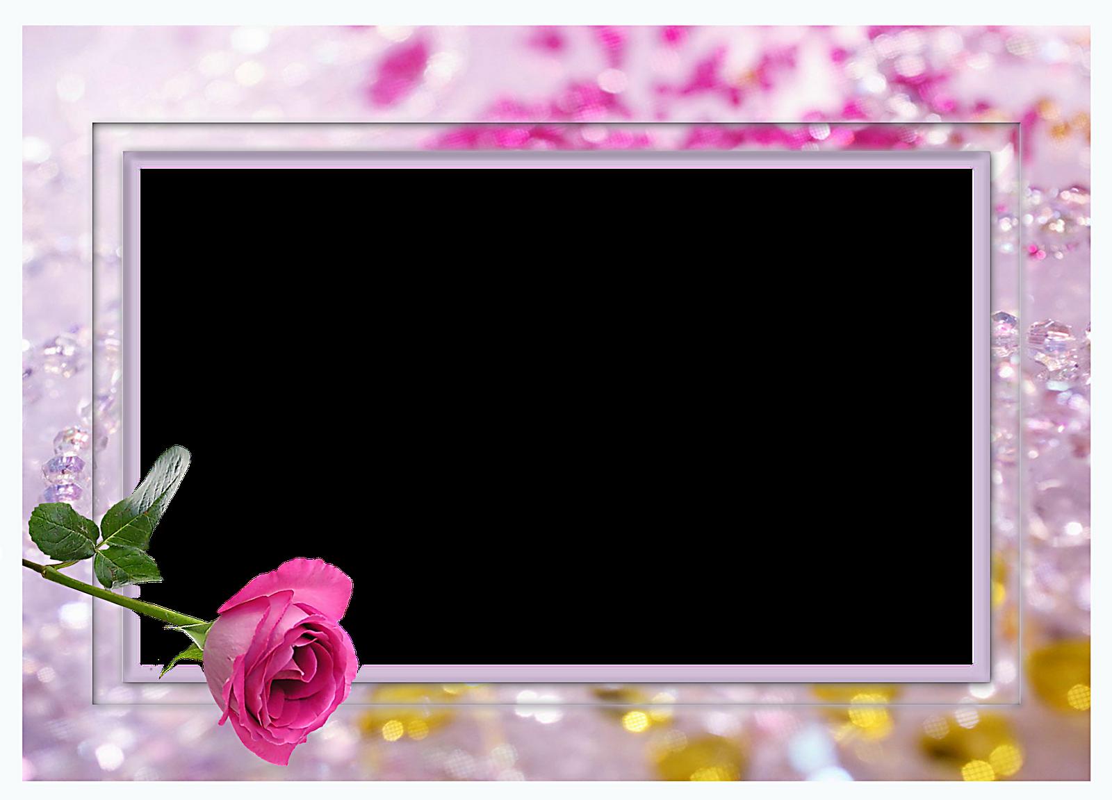 Marcos para fotos con flores fondos de pantalla y mucho m s - Pared marcos fotos ...
