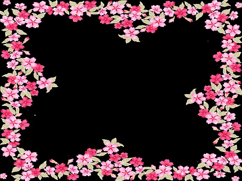 Marcos para fotos con flores   Fondos de pantalla y mucho más
